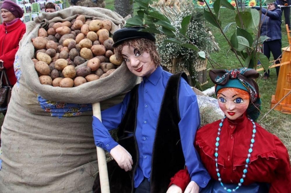 Главный продукт, которым славится Тамбовщина, – картофель.