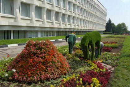 В середине лета, в июле, в городе на площади 100-летия Ленина установили зелёные топиарные фигуры.