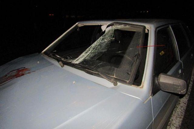 ВСтавропольском крае шофёр иномарки насмерть сбил пешехода