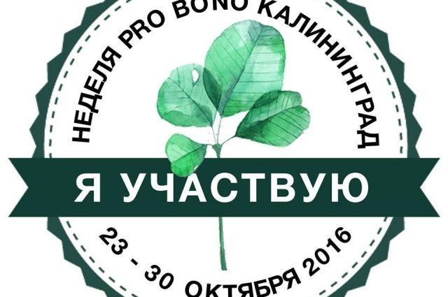Калининградцам предлагают на неделю стать волонтером «по профессии».