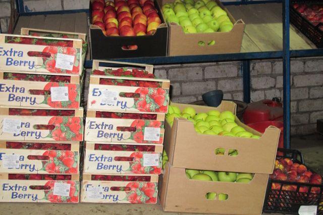 Овощи и фрукты не прошли проверку по качеству.