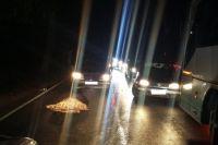 Полиция выясняет обстоятельства гибели ребенка на трассе под Балтийском.