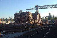 Древесина в порту