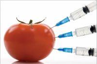 Отсутствие эффективной системы контроля и надзора не позволяет пока говорить о возможности либерализации ГМО в Украине