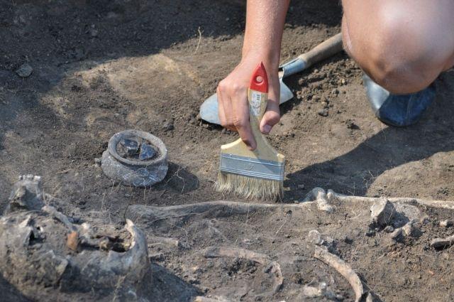 ВЖитомире откопали старинное подземелье