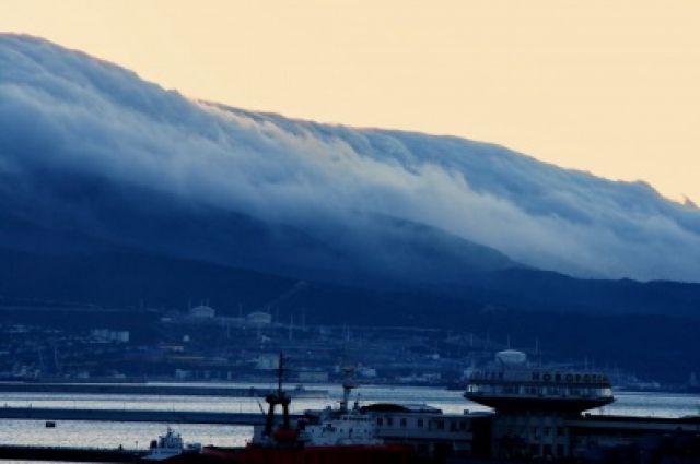 Ураганный ветер вНовороссийске сносит светофоры идорожные знаки