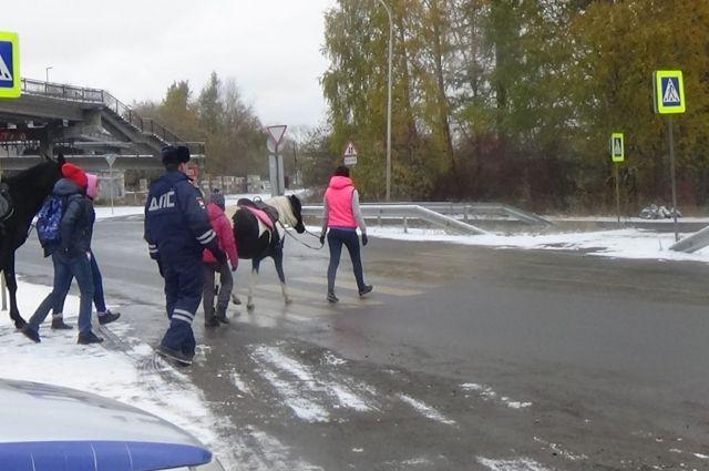 Свердловские инспекторы пытаются объяснить, как водителям, так и пешеходам, что нужно всего лишь соблюдать правила дорожного движения.