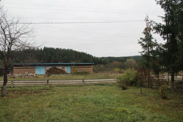 Вокруг села - бескрайние хвойные леса.