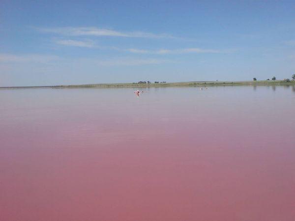 Малиновое озеро – бессточное, горько-соленое озеро, находится в Михайловском районе Алтайского края.