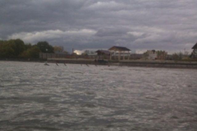 Один из самых крупных водных объектов, где прошла акция - Пензенское водохранилище.