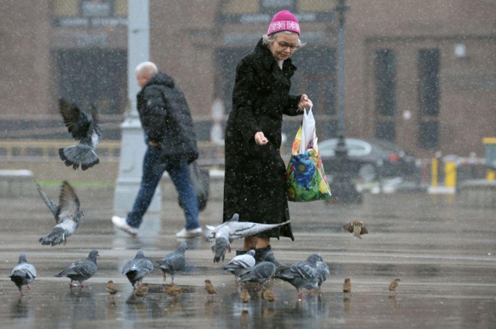 Женщина кормит голубей на улице в Москве, где выпал первый снег.