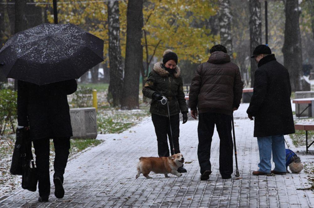 Люди выгуливают собак в одном из парков в Москве.