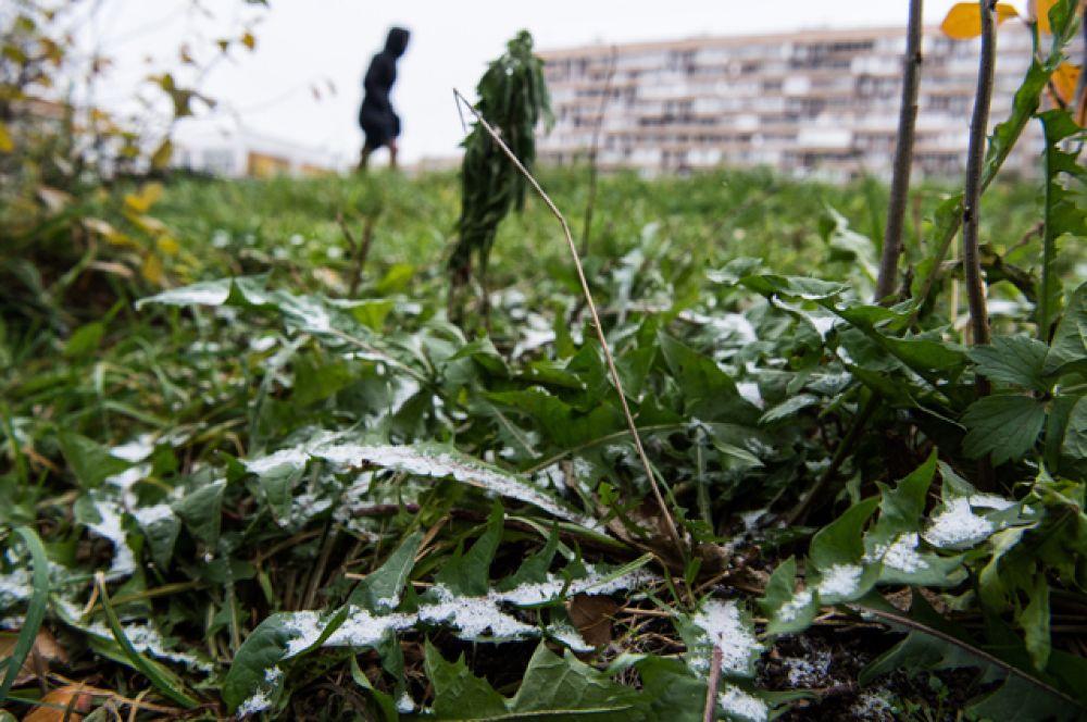 Первый снег в Москве.