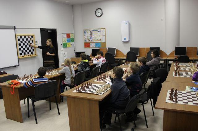 Картинки по запросу фото урок в шахматной школе