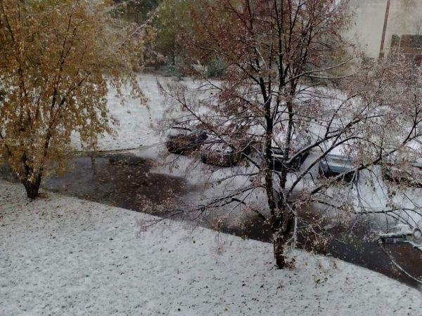 А это фото родом из Черниговщины