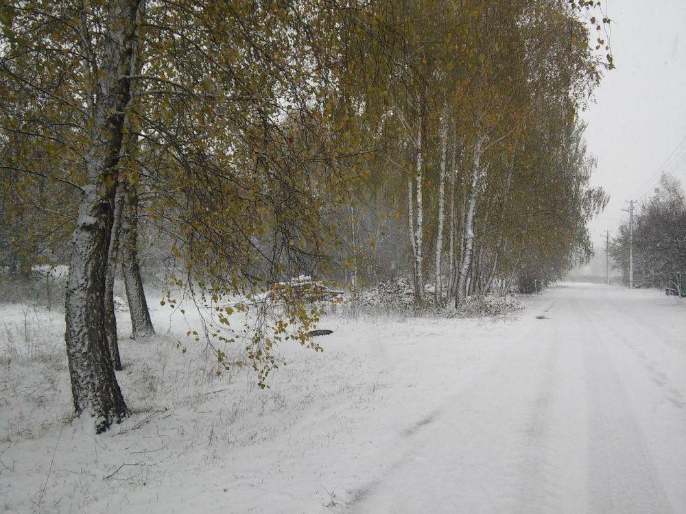 Конечно же в поселках выпало снега больше, чем в самом Чернигове. Северная часть Украины отличилась по выпадению снега больше, чем остальные области