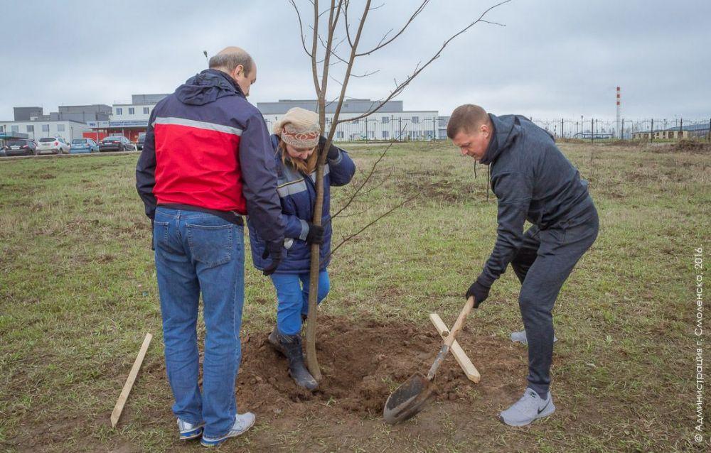 Николай Алашеев сажает дерево на субботнике в апреле 2016 года в стильном спортивном костюме.