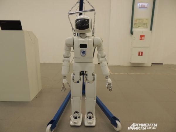 «Человек будущего» за 20 млн рублей. У него великолепно развиты суставы, умеет разговаривать и самостоятельно пополнять запас слов.