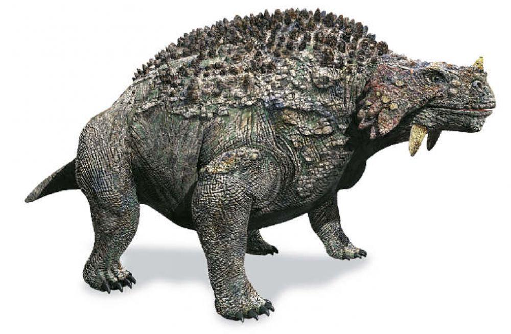 Скутозавр - этот крупный травоядный ящер, который существовал на территории Архангельской области около 250 миллионов лет назад. Общая длина его достигала 3-3,5 метров. По всему телу он имел панцирь с отростками, защищавшими его от нападения хищников, таких как иностранцевия. Скутозавры обитали возле пресных водоёмов: одни палеонтологи говорят, что они были полностью наземными животными, другие настаивают на том, что это были водные ящеры. Родственники ух найдены в Африке и Татарстане.