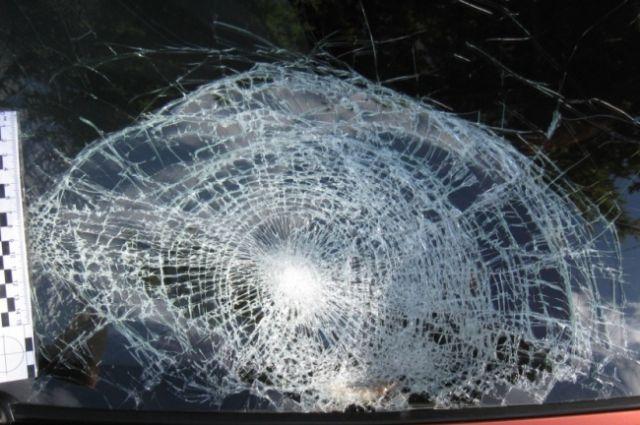 Наулице Салова припаркованное авто разбило упавшим деревом
