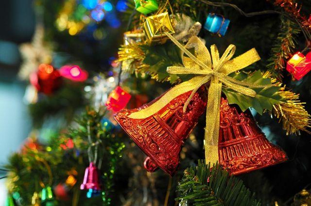Омичи будут гулять в дендросаде все новогодние каникулы.