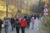 К концу года количество посетителей увеличиться на 50 тысяч.