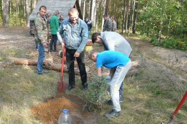 Вбрянских лесах осенью собрали больше 100 тонн мусора