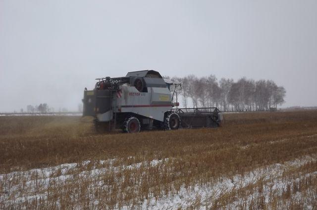 РежимЧС введен вТульской области всвязи с смертью урожая