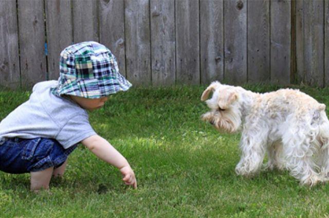 Воспитывать любовь нужно с самого маленького возраста.