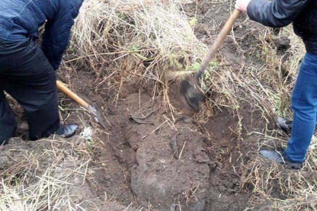 ВКременчуге отыскали тело юного человека, которого убили родственники