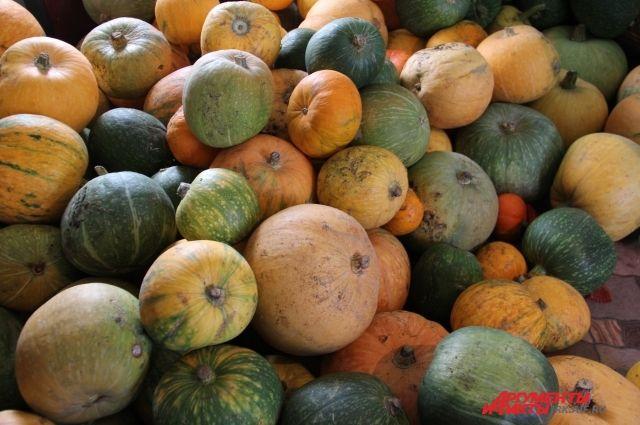 Глава региона предложил аграриям помочь многодетным семьям, снабдив их овощами.