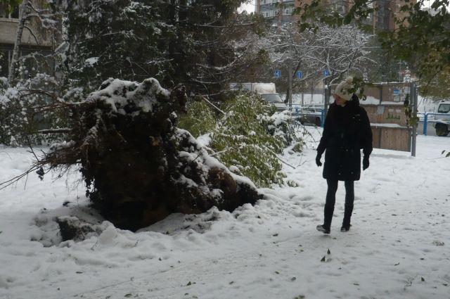 ВСамаре бригадыМП «Благоустройство» устраняют последствия снегопада