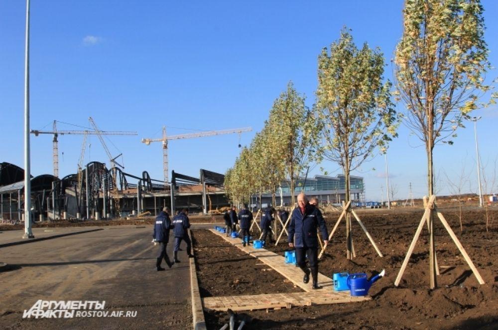 По этой аллее пассажиры будут попадать в аэрогавань, сейчас здесь сажают деревья.