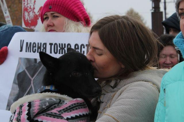 Защитники животных требуют ужесточить наказание для живодеров.