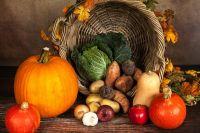 Зимой наш организм особенно нуждается в свежих овощах. Чтобы радовать себя и свою семью витаминами вплоть до прихода весны овощи необходимо подготовить к долгой зимовке.