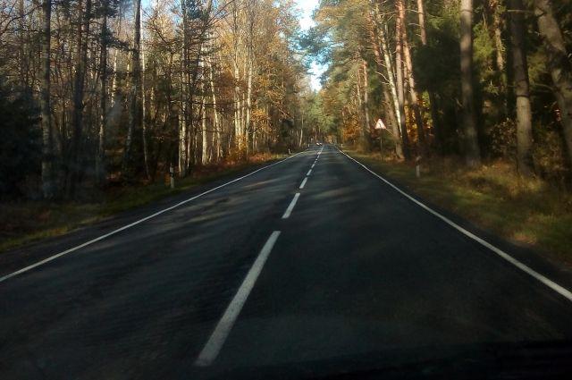 На трассе Калининград-Янтарный в ДТП попали машина такси и микроавтобус.