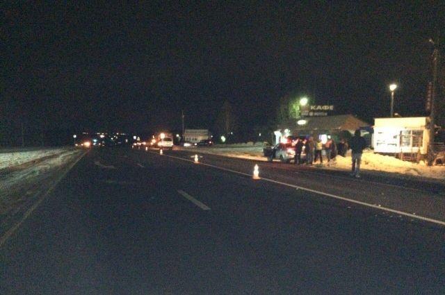 Сбитого натрассе под Тулой пешехода переехали 5 авто