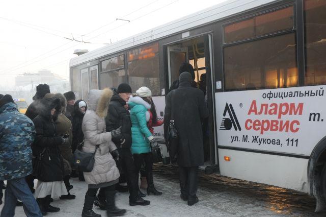 Омичей хотят вернуть в муниципальный транспорт.