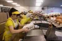 Евсинская фабрика производит миллионы яиц