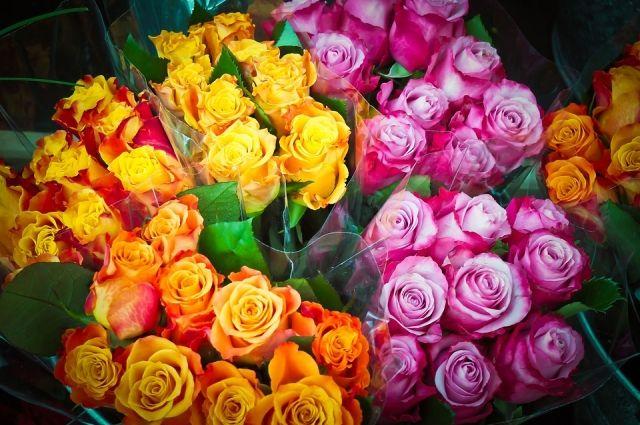 ВКЧР из-за аномальной жары зацвели розы