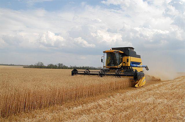 Аграрии района намолотили более 200 тысяч тонн зерна