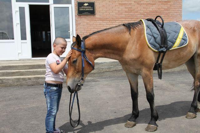 Вернее коня друга не найти.