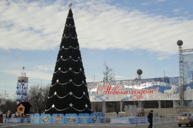 ВВолгограде объявлен конкурс наустановку основной новогодней елки города