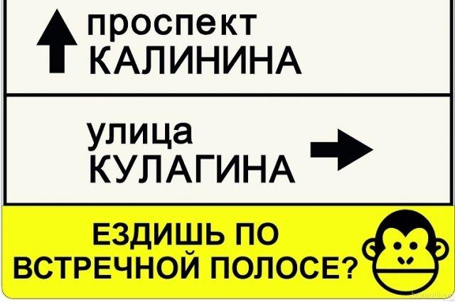 Необыкновенные дорожные знаки установили на трассах Барнаула