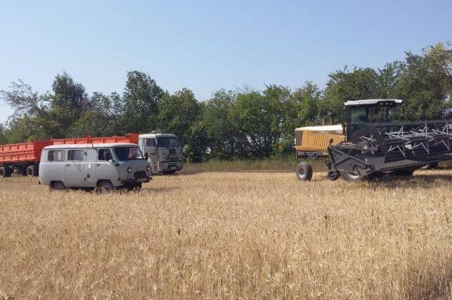 Все хозяйства Брединского района ожидает проверка.