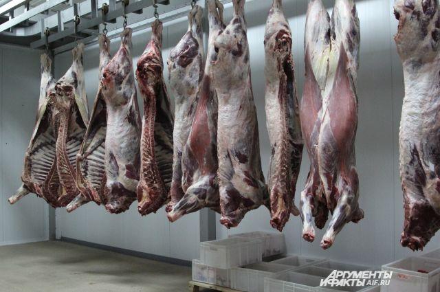 НаДону взавезенном мясе отыскали вирус африканской чумы свиней
