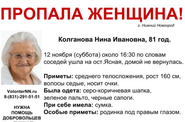 Волонтеры просят помощи впоисках пропавшей Нижнем Новгороде 81-летней Нины Колгановой