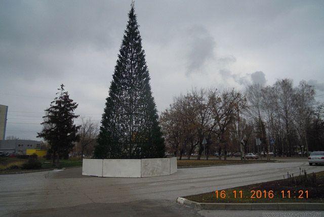 Новогоднюю красавицу установили в Первомайском районе города.