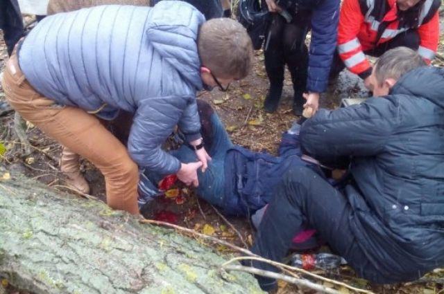 ВУжгороде нашкольницу рухнуло дерево, которое срезали коммунальщики
