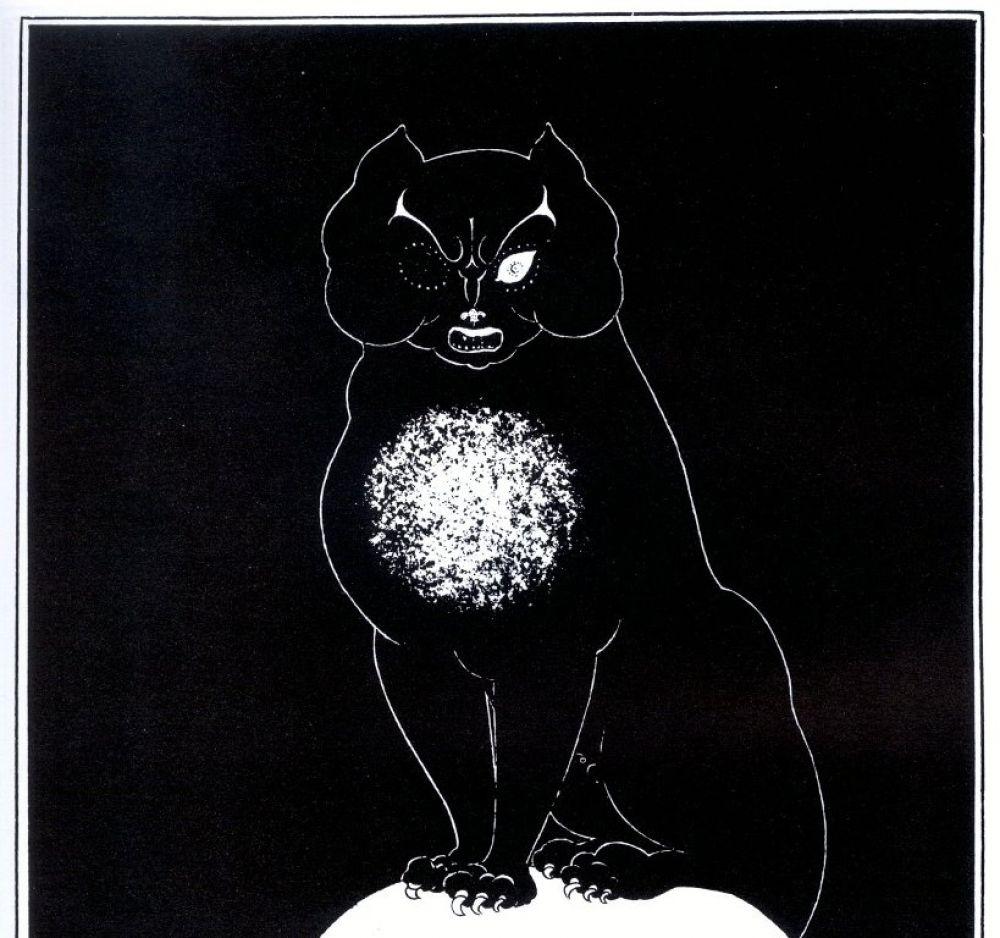 Чёрный кот является самым загадочным персонажем одноимённого рассказа Эдгара По, написанного в 1843 году. Герой произведения – алкоголик, который однажды в припадке гнева калечит, а затем и убивает своего питомца. Позже мужчина находит похожего кота и берёт его домой, однако вскоре замечает, что единственное белое пятно на груди животного формой похоже на виселицу. В очередном приступе убив жену, рассказчик прячет её тело в стене и оправдывается перед полицейскими, но преступление раскрывается, а на голове найденной женщины сидит одноглазый чёрный кот.